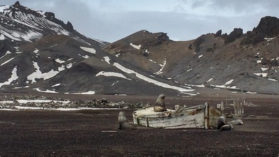 Estas fotos incríveis documentam a mudança climática na Antártica