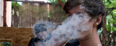 Fumar maconha por tabela prejudica ratos. Mas e os seres humanos?