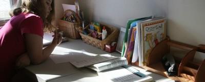 Am fost la întâlnirea părinților din București care-și trimit copiii la homeschooling, ca să înțeleg de ce-o fac