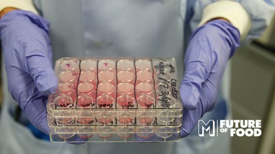 Meet the Scientist Trying to Grow Steak in a Lab