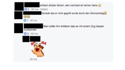 Straches Facebook-Seite ist zu einem gefährlichen Ort der Entmenschlichung geworden