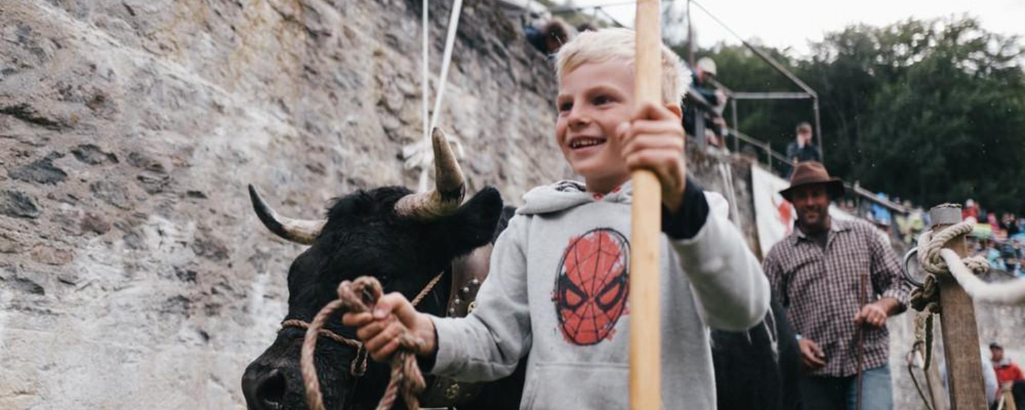 Φωτογραφίες από το Παραδοσιακό Τουρνουά Αγελαδομαχιών της Ελβετίας