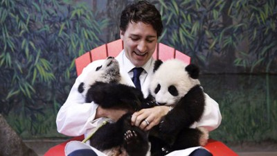 Kid Icarus in the PMO: Trudeau Has Broken a Massive Promise, But He's Still Gonna Fly