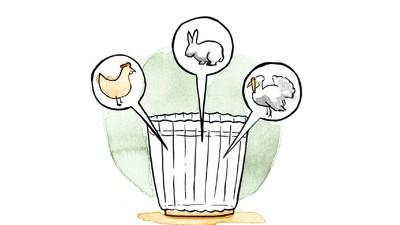 Nueve consejos para beber mezcal