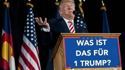 Wir beantworten die Fragen zur US-Wahl, die Österreicher am häufigsten googeln