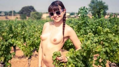 Avec les Français qui plantent des arbres dès que vous vous masturbez