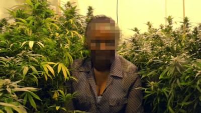 How the Bedroom Tax Led to the Rise of Grandmas Growing Weed