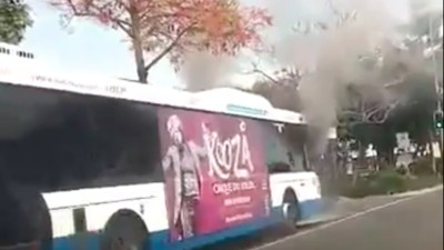 A Brisbane Bus Driver Has Died After Being Set on Fire