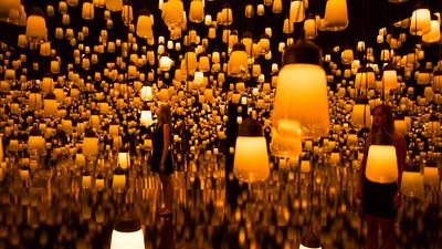 Tausende bewegungsgesteuerte Lampen bilden einen interaktiven Lichterwald