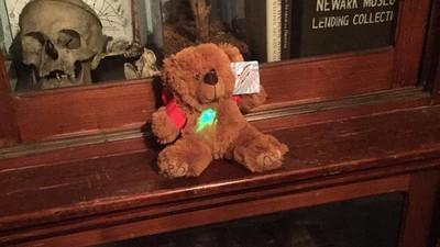 Ich bin mit einem Teddybären auf Geisterjagd gegangen