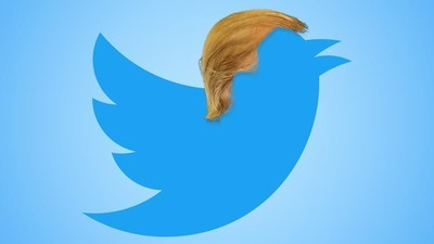 Trump's Staff Has Banned Him from Twitter Until the Election