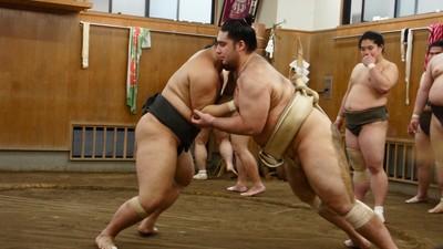 A ascensão de Kaisei, o primeiro brasileiro na elite do sumô japonês