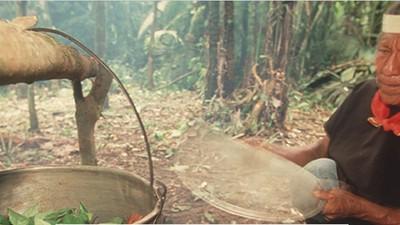 Cómo las celebrities han arruinado las ceremonias de ayahuasca