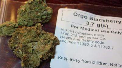 Un nuevo estudio dice que la marihuana aumenta la función cognitiva