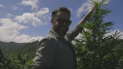 Miscelánea: Marihuana Mexicana