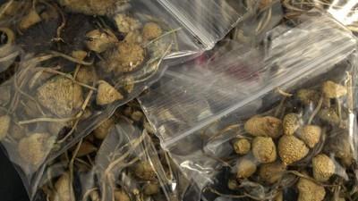 Tratamentul cu ciuperci halucinogene ar putea ajuta bolnavii de cancer să sufere mai puțin