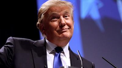 Donald Trumps lockere Telefonate rauben Diplomaten den letzten Nerv