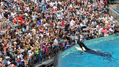 SeaWorld Is Laying Off Hundreds of Employees