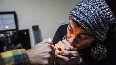 Steve-O sigue fumando vellos púbicos y analizando pipí