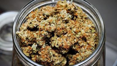 Waarom willen zorgverzekeraars medicinale cannabis niet meer vergoeden?