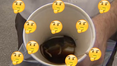 ​A Man Says He Found a Dead Mouse in His Tim Hortons Coffee But We're Skeptical