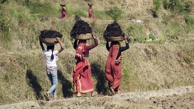 Las mujeres salvarán el mundo que los hombres se están cargando