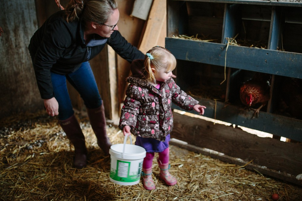 Miriam Chatwin and her youngest daughter collect the morning's eggs in Bountiful, BC.
