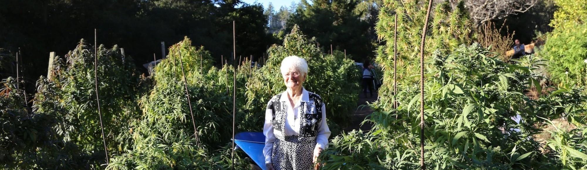 Bong Appetit: Nonna Marihuana