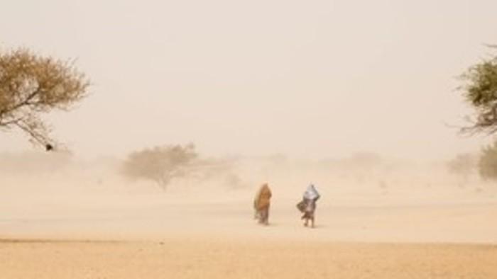 Призраки Боко Харам: как нигерийские беженцы выживают после резни в городе Бага