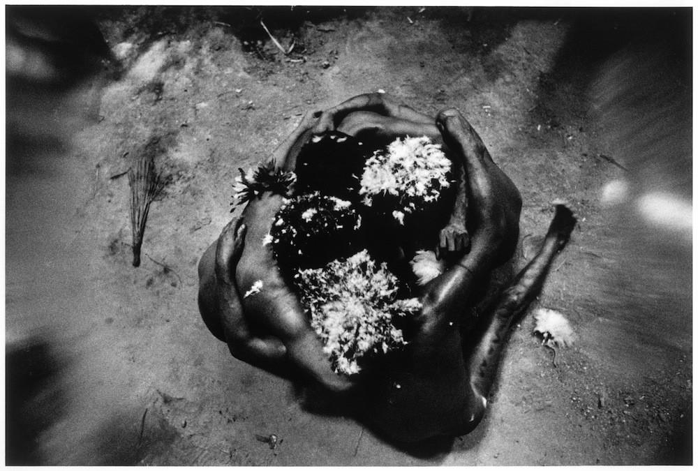 Los xapiripë han bailado para los chamanes desde el comienzo de los tiempos. Sus cabezas están cubiertas de plumas blancas, y usan cintas negras hechas de cola de chango y plumas de cotinga turquesa en las orejas. Bailan en círculos, sin prisa.