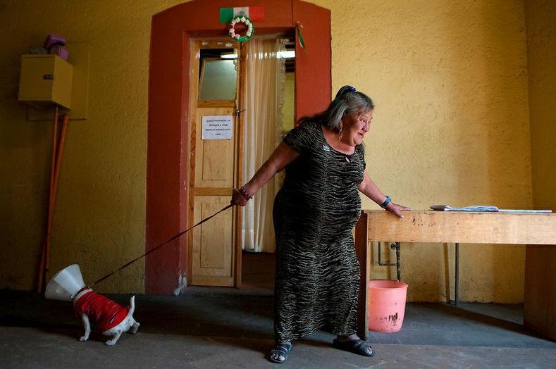 Canela, una residente de la casa, trata de pasear al perro de una visita.