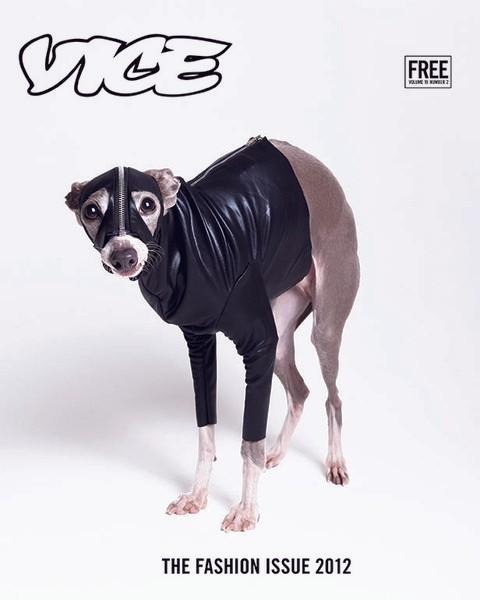 Edição de Moda 2012